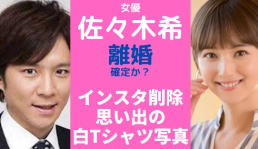 佐々木希と渡部健が離婚?インスタ写真削除されていた!