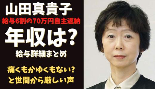 山田真貴子の年収は?自主返納でも関係ない?官僚の年収が異常!