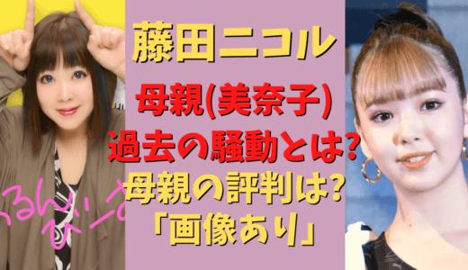 藤田ニコル母親の騒動の理由は「お金?」娘のギャラを使い込み疑惑も!