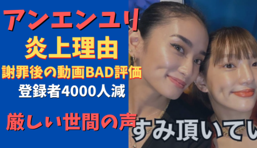 アンエンユリ炎上理由まとめ「波物語フェス」明け!動画にBAD評価!