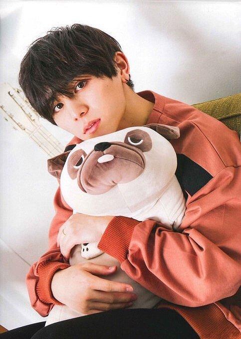 山田涼介が犬のクッションを抱いている画像
