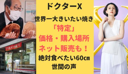 ドクターX2021(たい焼き)の購入先を特定【丸子峠】特注たい焼きが話題に!